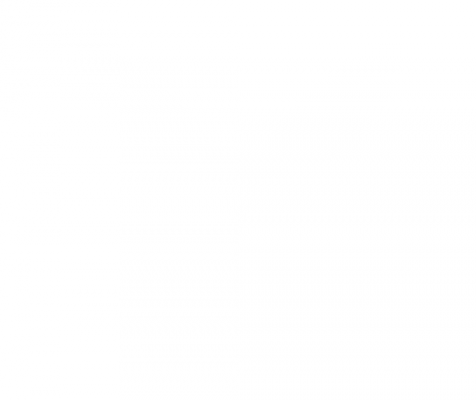 Singularity Institute